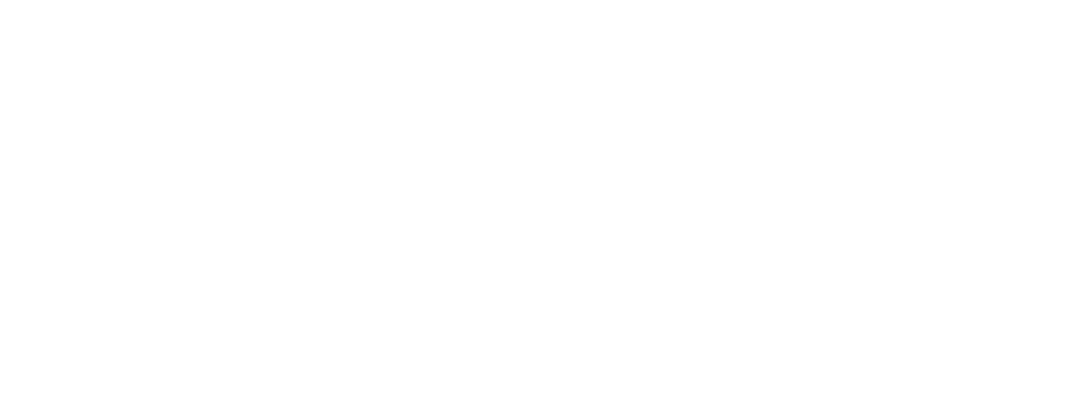 The Visionary Group Logo